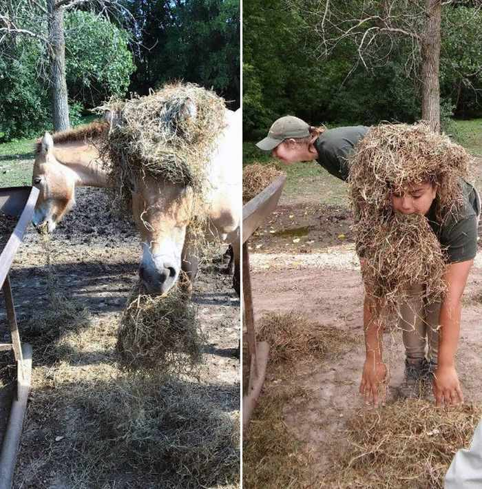 16 Funny Pictures of Zookeepers as Animals Will Make Your Day -16